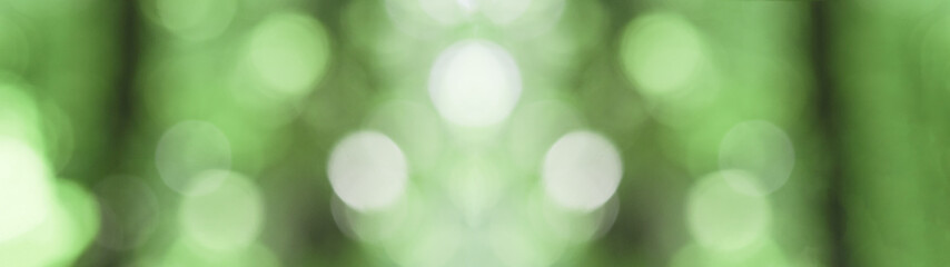 Grenn bokeh in the forest background panorama banner long