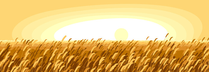 Wheat field scenic tranquil and calm landscape vector illustration, forget about all the problems and relax concept.