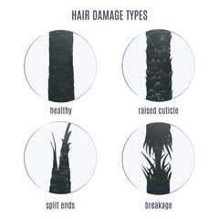 Types of hair damage