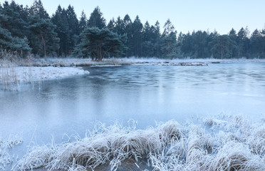 frozen lake in forest during winter