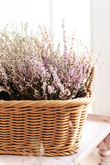 A bouquet of purple heather and lavender flowers in a wicker basket stands on a wooden windowsill against a white wall, flowers for March 8, a cozy house, macro shooting, selective focus