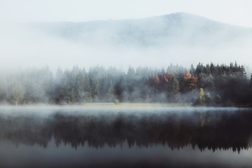 Foto op Canvas Ochtendstond met mist Foggy morning in the wilderness forest. Colorful trees reflected in the lake. Autumn nature wallpaper