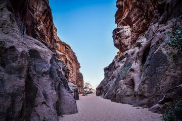 Poster Lavende Wadi Rum, Jordan