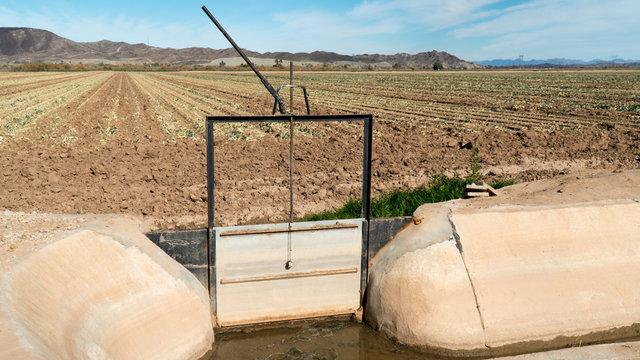 Closed irrigation sluice gate in farmers field - Arizona