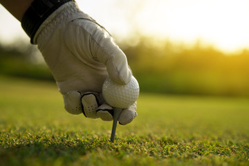 Cropped Hand Of Man Holding Golf Ball On Tee