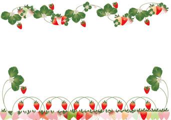 いちごの葉と花カラフルなイチゴイラストの背景素材