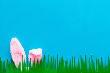 Easter bunny's ears behind grass on blue background top-down copy space