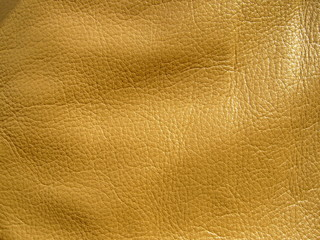 The texture of the skin close-up. Genuine haberdashery leather in gold color. Genuine Leather