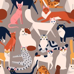 Seamless colored pattern with different cat breeds flat illustration. Creative decorative background with various pet vector isolated on gray. Funny cute domestic animal