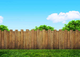 Fotorolgordijn Tuin tree in garden and wooden backyard fence with grass