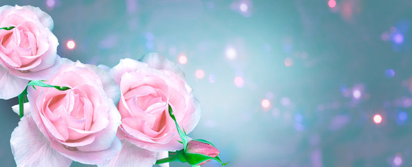 Bouquet of pink roses with a bud on a blue background with bokeh, mockup for greeting card Happy Valentine's Day, Mother's Day, banner, background, copy space
