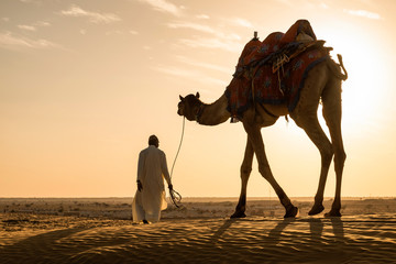 Poster Kameel Rear View Of Man With Camel Walking On Desert At Sunset