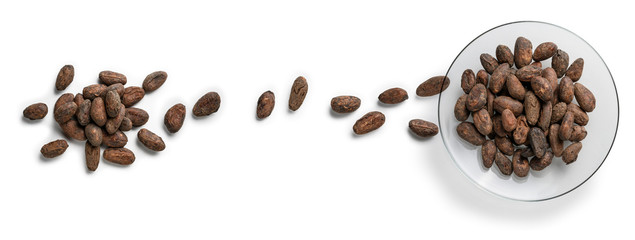 Cocoa beans on a white background. The view from the top