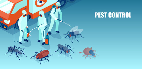 pest control professional team exterminating insects