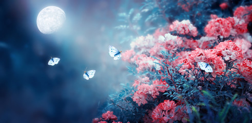 Magical fantasy enchanted fairy tale landscape with fabulous fairytale blooming pink rose flower garden and flying butterflies on blurred mysterious blue background and shiny glowing moon ray in night