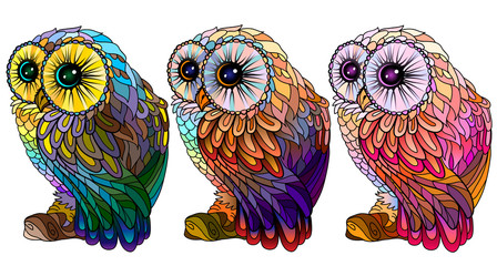 Foto op Aluminium Pop Art Owl. Wall sticker. Set of 3 artistic, hand-drawn, decorative multicolored owls on a white background.