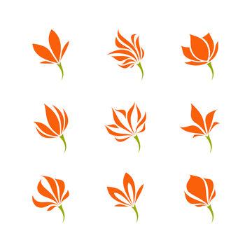 Tropical flower. Elegant vector logo template or icon. Set of filigree design elements
