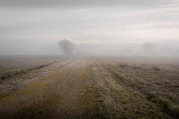 Cappuccino Journée de brouillard dans le Tarn