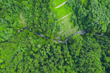Foto op Aluminium Luchtfoto Green forest and flowing river, aerial view. Texture of green forest