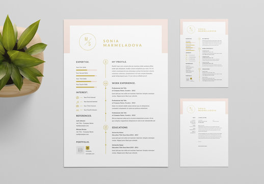 Resume Layout with Pale Pink Header