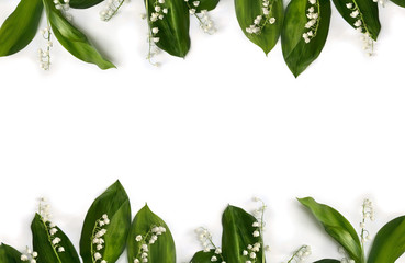 Frame of flower with leaves Lily of the valley ( Convallaria majalis, May bells, may-lily ) on a white background with space for text. Top view, flat lay