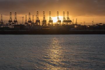 Big Hamburg harbor in the sunset