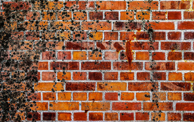 Detailed close up view on damaged bricks walls with cracks
