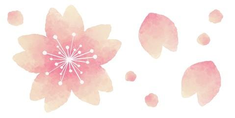 桜の花 飾り 水彩風イラスト