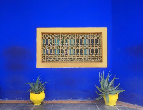 Potted Aloe Vera Plants On Floor Against Blue House With Window