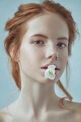 flower of a carnation