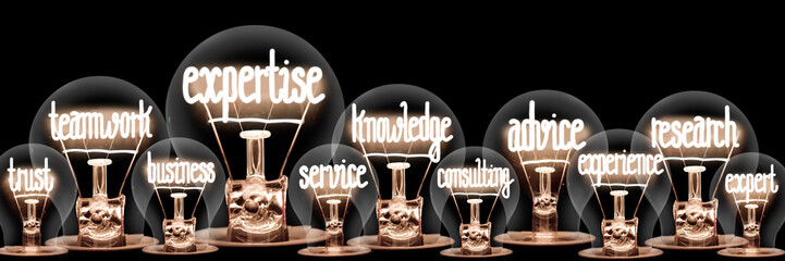 Light Bulbs with Expertise Concept