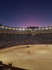 Spanish Bullfighting in Las Ventas