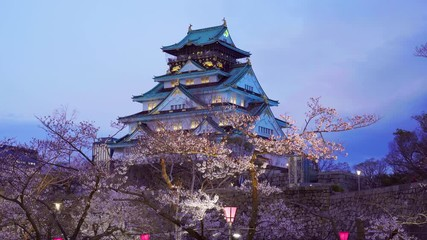 Wall Mural - Cherry blossoms and castle in Osaka, Japan.