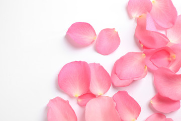 Foto op Canvas Roses Fresh pink rose petals on white background, top view