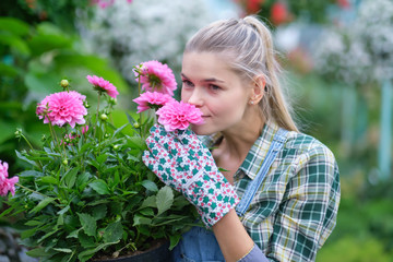 happy  woman gardener choosing flower pot with anthuriums in garden center