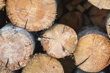 Photo sur Aluminium Texture de bois de chauffage Pile of firewood, close up photo