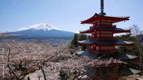 Wall mural Cherry blossoms at Chureito pagoda in Spring, Japan.