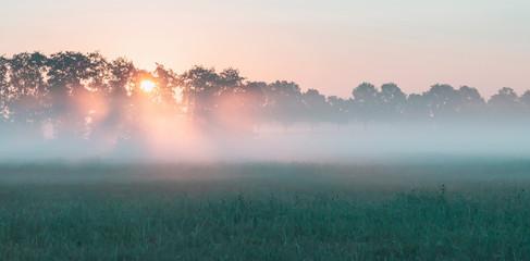 Sunbeams through trees in misty rural landscape at sunrise. Fototapete