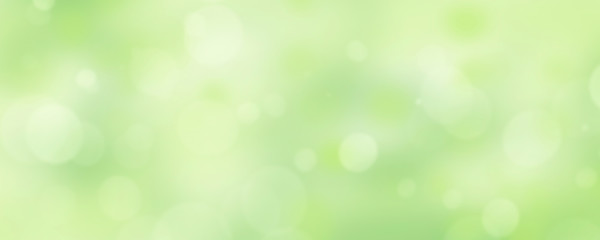 A fresh spring green garden foliage background with blurred bokeh.