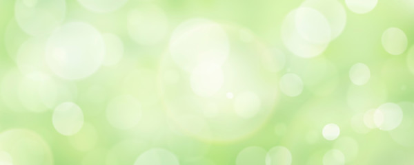 Photo sur cadre textile Printemps A fresh spring green garden foliage background with blurred bokeh.