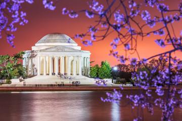 Wall Mural - Washington DC, USA Skyline on the River