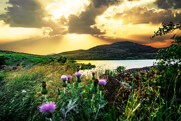 Spoed Foto op Canvas Zwavel geel A bright golden sunset in the valley of Wichita Mountains Wildlife Refuge overlooking Lake Jed Johnson near Lawton, Oklahoma, USA.