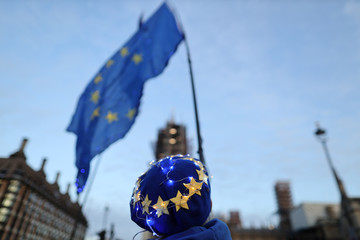 A man holds EU flag is seen outside the Houses of Parliament in London