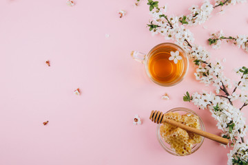 Spring composition. A cup of herbal tea and a jar of honey on a pink background, cherry flowers top view. Place for text. Healthy food concept.