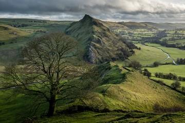 Foto op Plexiglas Pistache landscape in the mountains