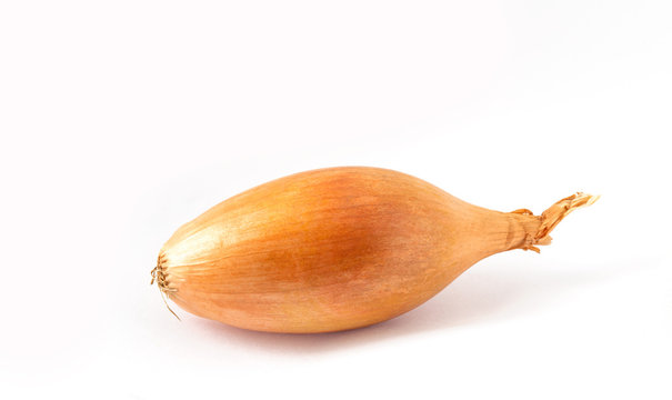 One shallot onion on a white background