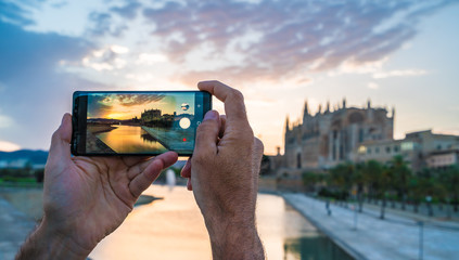 Wall Mural - Men using her smartphone for take a photo in Palma de Mallorca islands at sunset. In background Cathedral La Seu