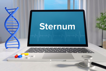 Sternum– Medicine/health. Computer in the office with term on the screen. Science/healthcare