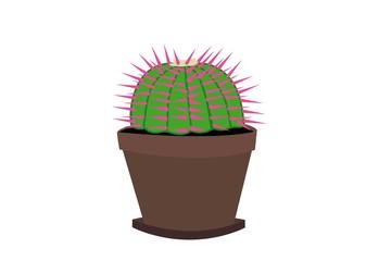 Fototapeta kaktus, kaktusik, kwiat, pasja, doniczka, ziemia, kobieta, kolce, ogród, podstawka, ozdoba, dekoracja, obrazek, ogrodnik obraz