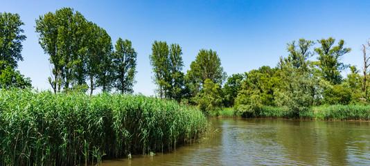 river Amer. National park Hollandse Biesbosch. Drimmelen. The Netherlands